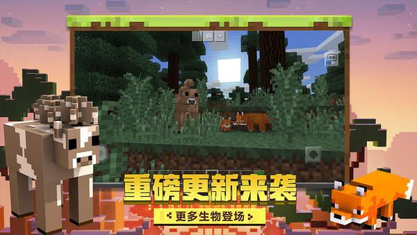 我的世界中国版1.17
