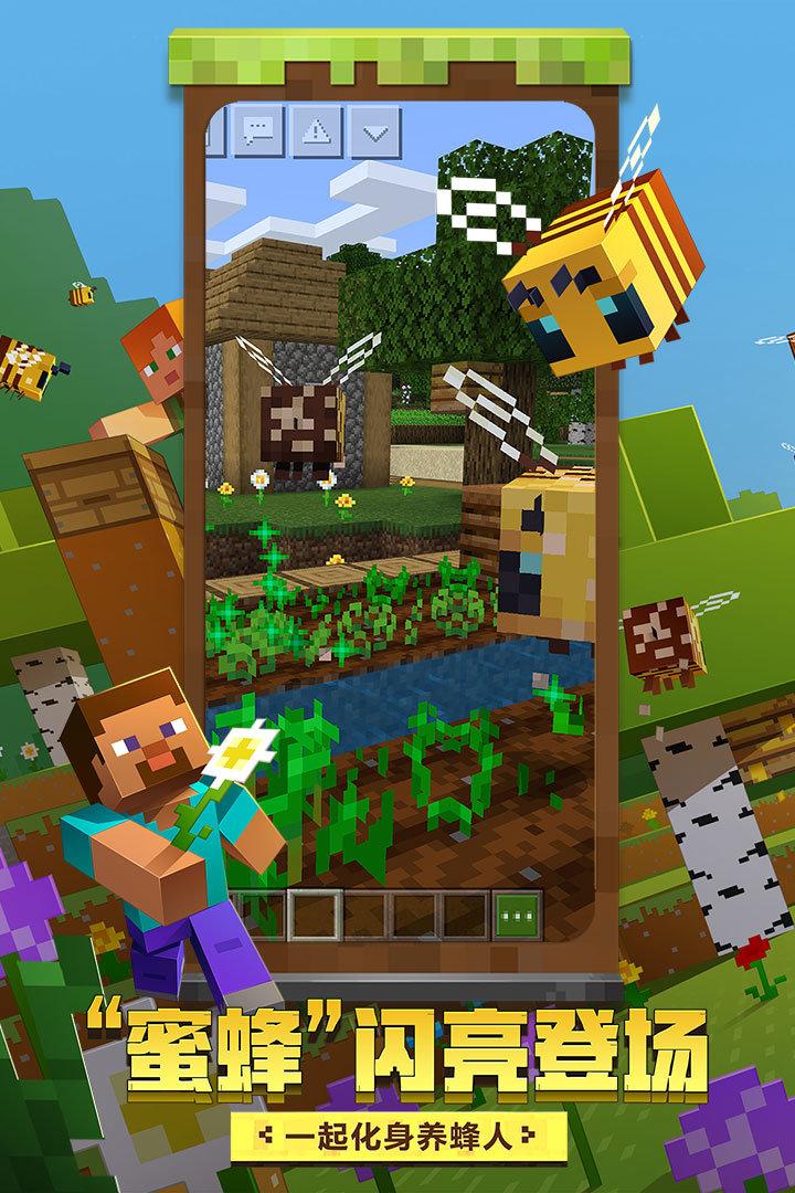 我的世界蜜蜂更新版图5