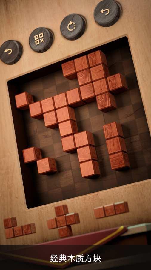 木块数独3D游戏图3