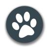 兽音译者app v1.5
