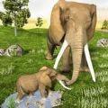 非洲野生大象