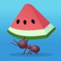 小蚁模拟器
